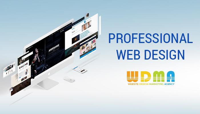 The Difference Between An Amateur And Professional Web Designer In Website Design Marketing Agency