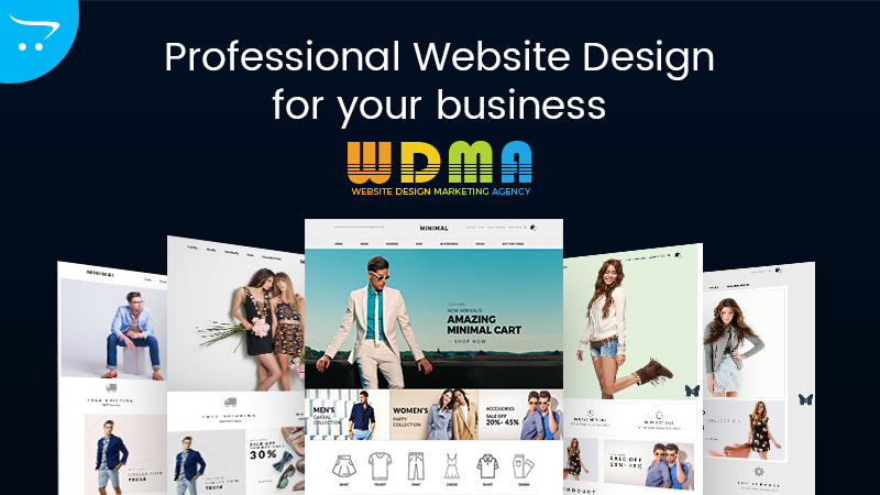 The Importance Of Having A Professional Website Design For Your Business